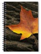 Maple Leaf Spiral Notebook