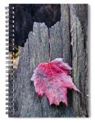 Maple Leaf - Uw Arboretum - Madison Spiral Notebook