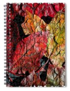 Maple Leaves Cracked Square Spiral Notebook