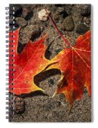 Maple Leaves In Water Spiral Notebook