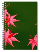 Maple Leaves Spiral Notebook