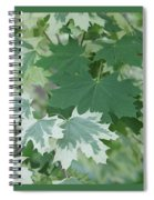 Maple Leaves Same Tree Spiral Notebook
