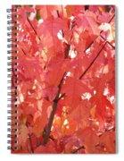 Maple Madder Spiral Notebook