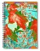 Maple Mania 28 Spiral Notebook
