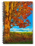 Maple Moon - Paint Spiral Notebook