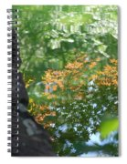 Maple Reflections Spiral Notebook