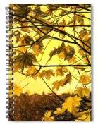 Maple Sunset - Paint Spiral Notebook