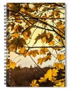 Maple Sunset Spiral Notebook
