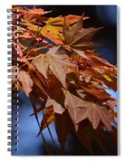 Maples In Spring 2013 Spiral Notebook