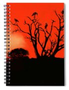 Marabou Tree Spiral Notebook