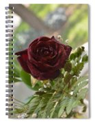 Marasmic Charm Spiral Notebook