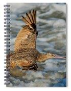 Marbled Godwit Flying Over Surf Spiral Notebook