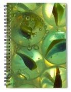 Marbles Cat Eyes Soda 1 D Spiral Notebook