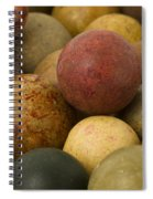 Marbles Clay 2 Spiral Notebook