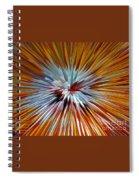 Mardi Gras Star Clown Spiral Notebook