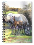 Mare And Foal Spiral Notebook