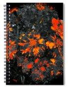 Marigold Fire Spiral Notebook