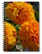 Marigold Mops Spiral Notebook