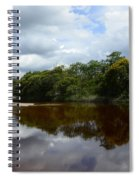 Marimbus River Brazil Reflections 4 Spiral Notebook