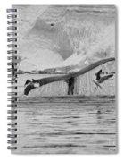 Marine Excitement... Spiral Notebook