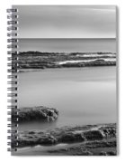 Marine Suprises Spiral Notebook
