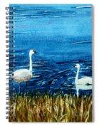 Marion Lake Swans Spiral Notebook