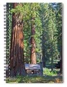 Giant Sequoias Mariposa Grove Spiral Notebook