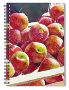 Market Apples Spiral Notebook