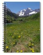 Maroon Bells Watercolor Spiral Notebook
