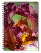 Maroon Noon Spiral Notebook