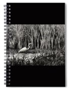 Marsh Hunter Spiral Notebook