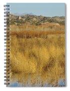 Marsh Lands In Wildlife Refuge Spiral Notebook