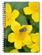 Marsh Marigold Spiral Notebook