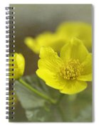 Marsh Marigolds Spiral Notebook