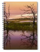Marsh Oil Painting Spiral Notebook