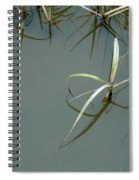 Marsh Reflections Spiral Notebook
