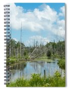 Marsh Scene Spiral Notebook