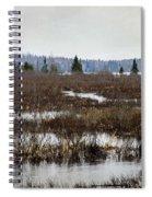 Marsh Tones Spiral Notebook