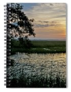 Marsh View Spiral Notebook