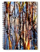 Marshgrass Spiral Notebook