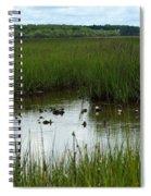 Marshlands Around Hilton Head Island Spiral Notebook