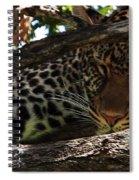 Masai Mara Leopard  Spiral Notebook
