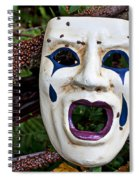 Mask And Ladybugs Spiral Notebook