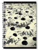 Mass Spiral Notebook