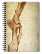 Mastodon Leg Bones Spiral Notebook