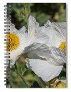 Matilija Poppy Spiral Notebook