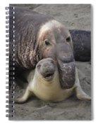Mating Fun Spiral Notebook