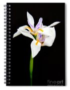 Maui Lilies On Black Spiral Notebook