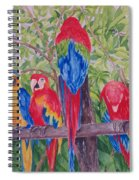 Maui Macaws Spiral Notebook