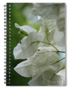 Mauna Kea White Bougainvillea Spiral Notebook